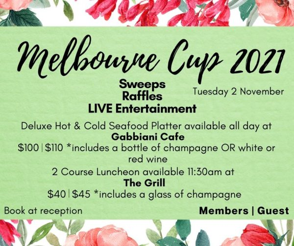 Melbourne Cup Tv Image Website